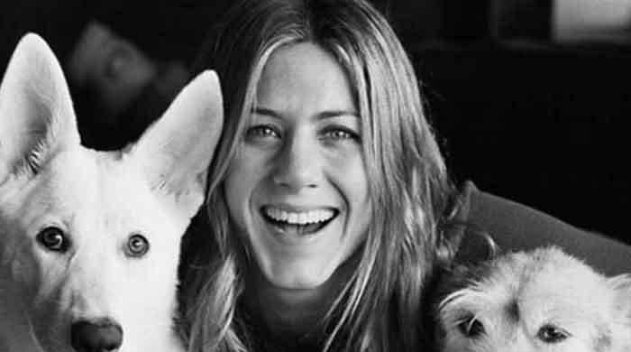 Here is how Jennifer Aniston remembers her deceased dog...