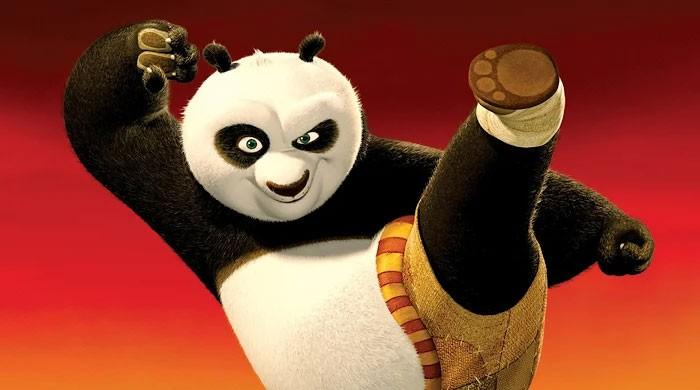 Director of Kung Fu Panda could expand creative animation in India