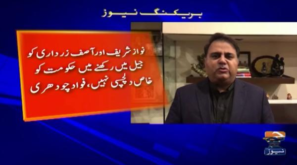 Fawad Chaudhry says there are shortcomings in court's decision over COAS extension
