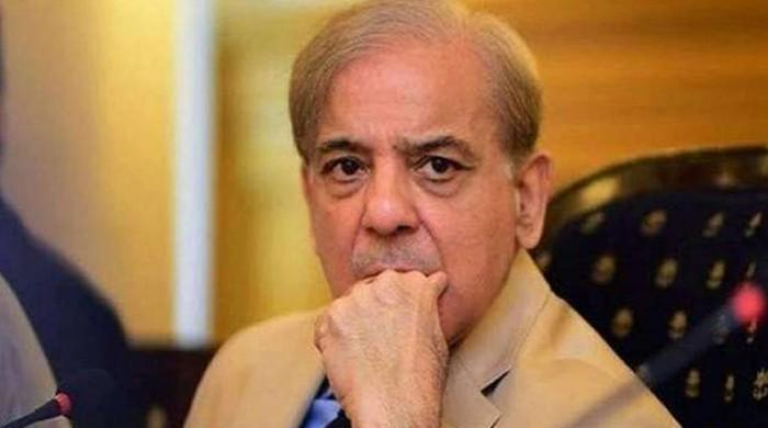 Shehbaz meets London lawyers to discuss defamation case