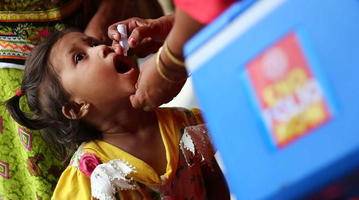 Six more polio cases reported in KP