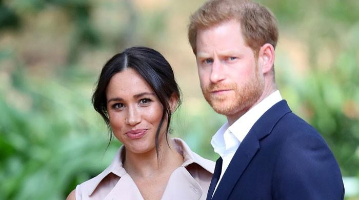 Breaking down Harry and Meghan's bid for 'financial independence'