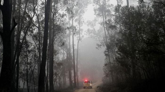Canberra airport closed for heightened firefighting operations