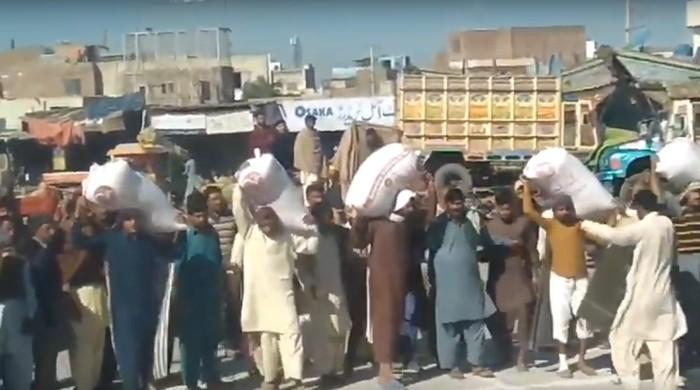 Faisalabad labourers hold unique 'wheat sack race'