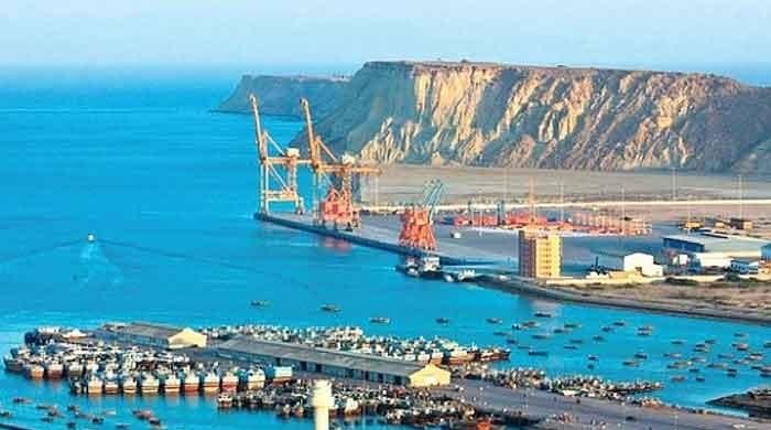 'CPEC offers opportunity to enhance Pakistan's agri sector'