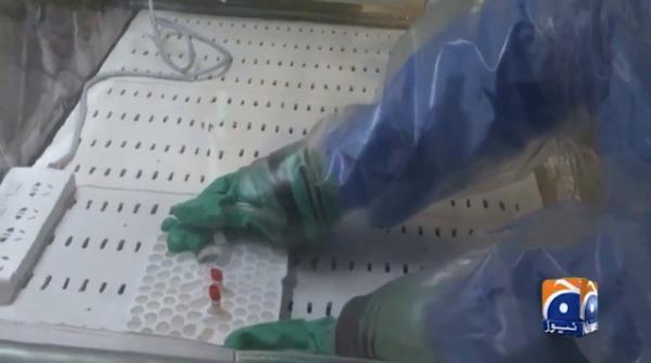 Coronavirus death toll in China rises to 2345