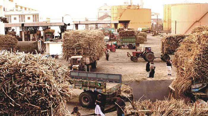 Sugar mills being operated under Cane Act, says PSMA chief Aslam Faruque