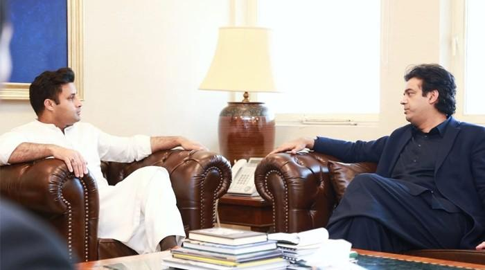 Zulfi Bukhari, Usman Dar agree to include Pakistani diaspora in PM's 'Corona Relief Tiger Force'