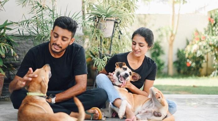 Ali & Noor: Guardian angels of Karachi's stray dogs, even during coronavirus crisis