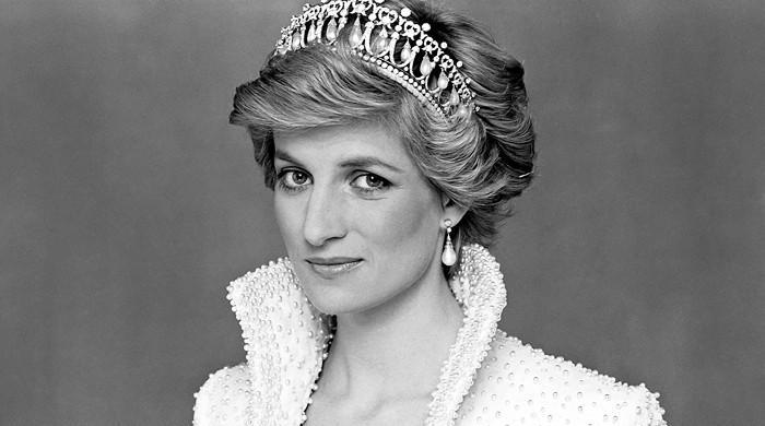 Princess Diana's ways of charming the public through her photos