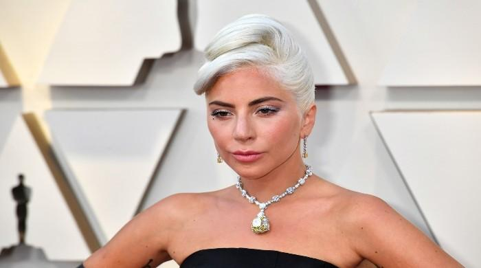 Lady Gaga once got pulled over for wearing $30million necklace out in public
