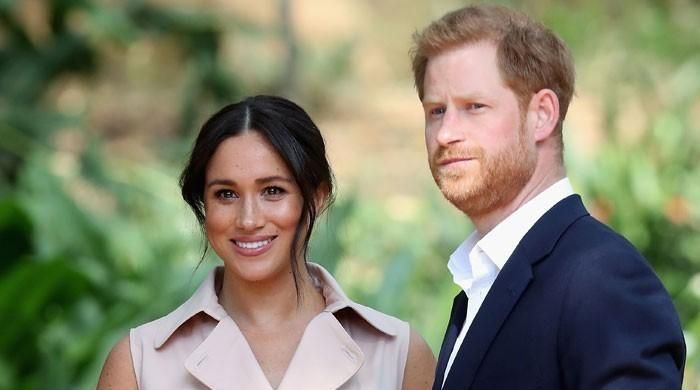 Harry and Meghan Markle's 'dynamite' biography may worsen royal rift: warns expert