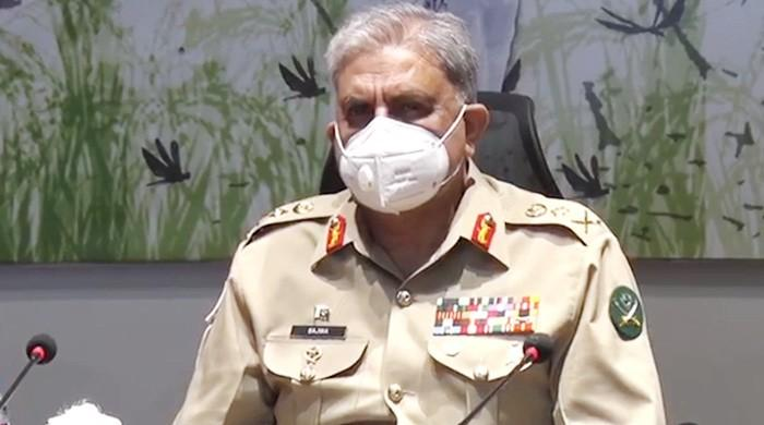 Army chief assures military's assistance in combating locusts