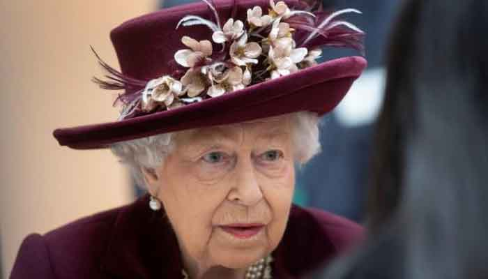 Queen Elizabeth takes part in first public video call