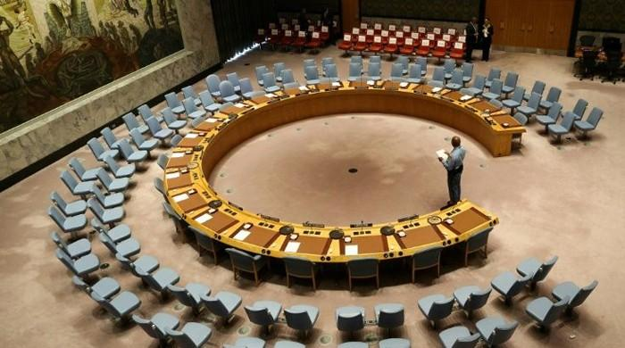 UNSC unanimously adopts resolution calling for pandemic-related halt to conflicts