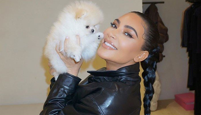 Kim Kardashian shows her love for pet dogs Sushi and Saké - Geo News
