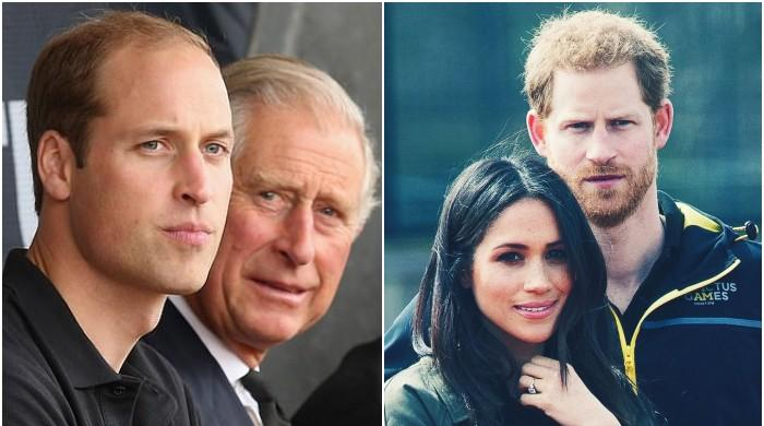 Prince William, Charles leaked news of Harry, Meghan's exit to 'divert attention'