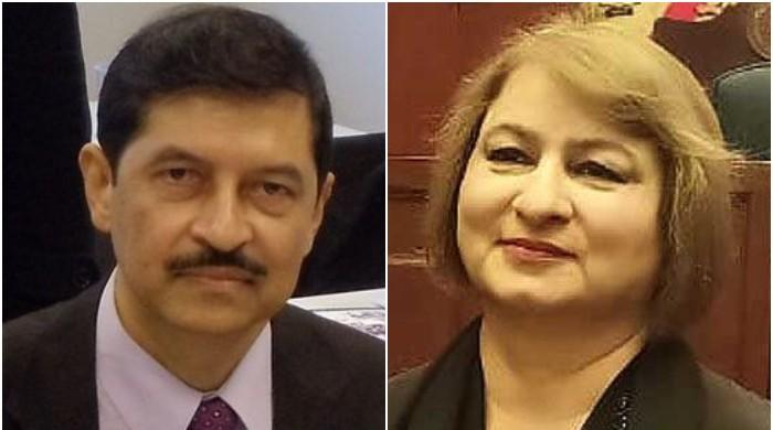 Nausheen Amjad removed, Javed Ghani appointed FBR chairman