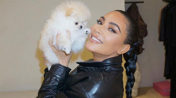 Kim Kardashian shows her love for pet dogs Sushi and Saké