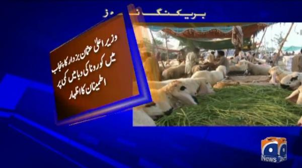 CM Bazdar orders to set up cattle markets 15 days before Eid-ul-Adha
