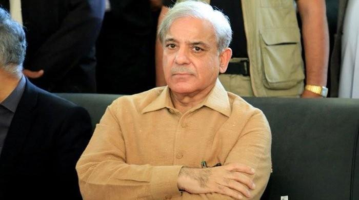 Shehbaz Sharif recovers from coronavirus: PML-N