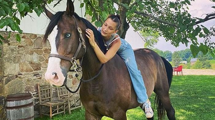 Bella Hadid rides her horse Blue bareback at mother's farmhouse