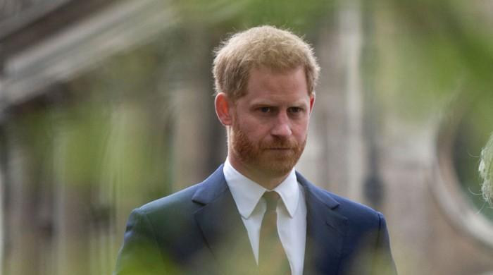 'Prince Harry can't even get a job at McDonald's': expert's claims blasted by duke