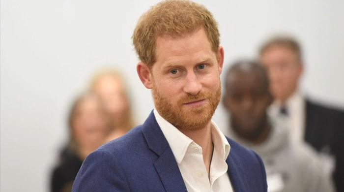 Prince Harry called an 'idiot' by former army veteran he would support