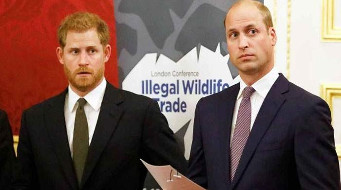Prince William, Prince Harry are lost amid a slew of 'difficult conversations'