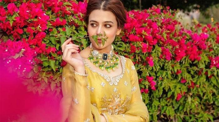 Zara Noor Abbas, Asad Siddiqui's latest PDA-filled photos win hearts