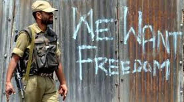Pakistan shows solidarity with Kashmiris braving Indian atrocities