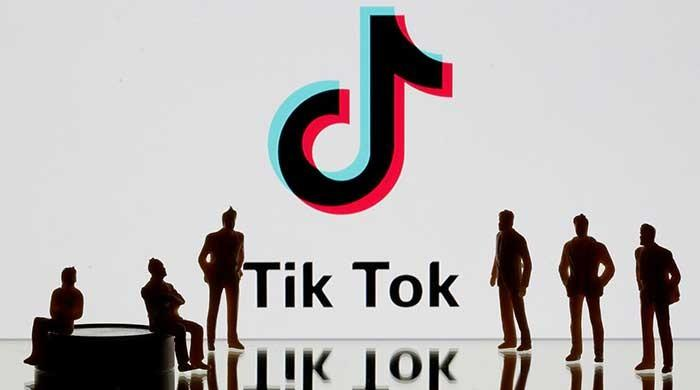 Twitter in early talks with TikTok about possible combination: WSJ