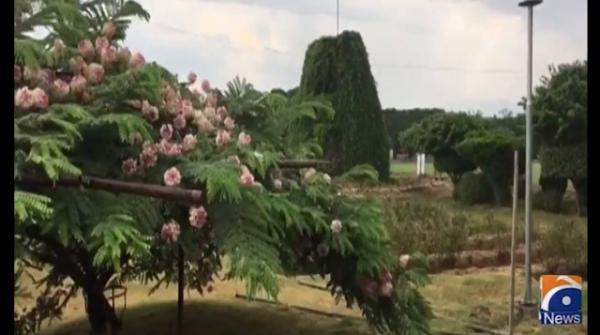 پشاور اور ملحقہ علاقوں میں کہیں بوندا باندی ،کہیں ہلکی بارش