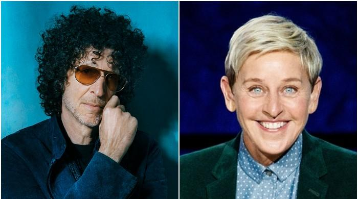 Howard Stern tells Ellen DeGeneres how to 'rebrand' herself after recent fiasco