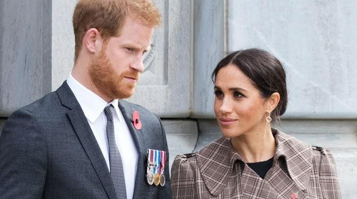 Prince Harry felt 'disgusted' after reading hateful comments about himself and Meghan