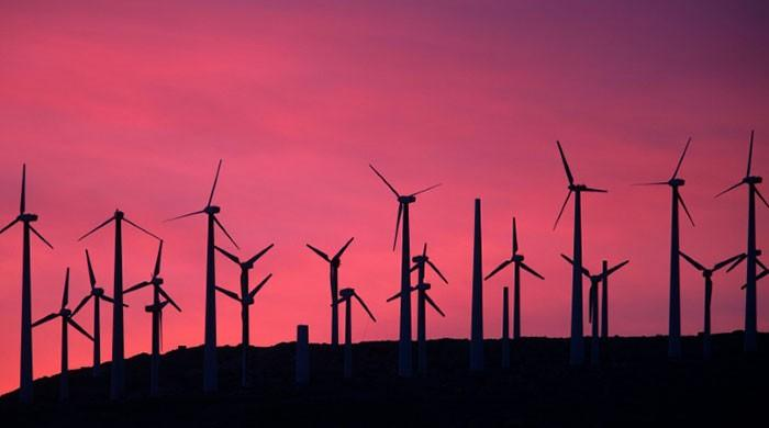 Wind and solar energy produced 10% of global electricity in 2020