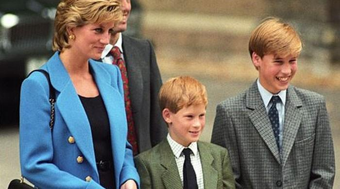 Princess Diana would have 'fought' for Prince William and Harry amid royal rift