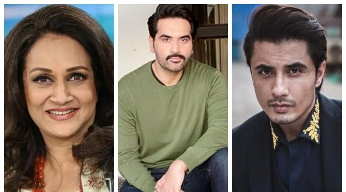 Bushra Ansari, Humayun Saeed, Ali Zafar among civil award recipients