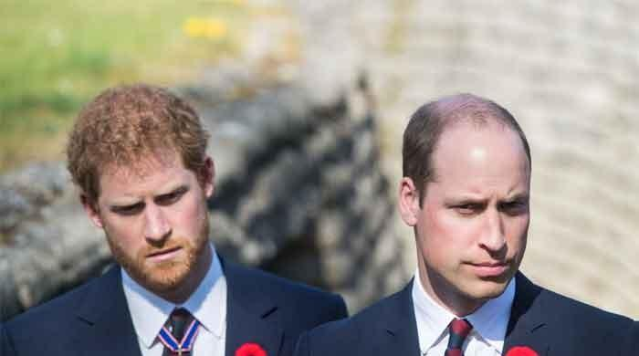 Prince Harry and Prince William's ties are improving, says royal expert