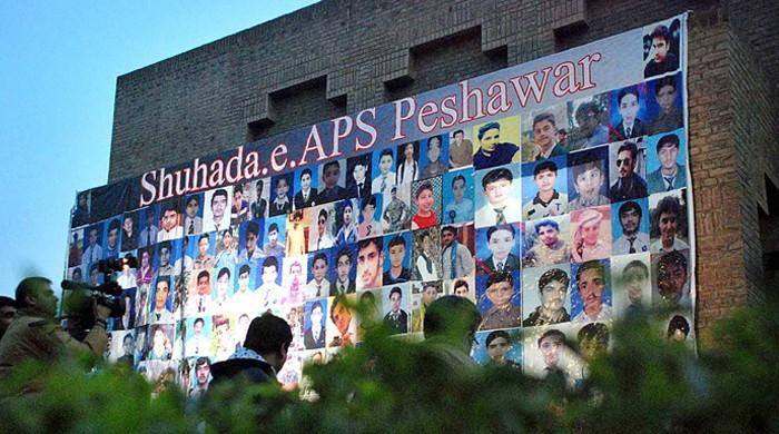 Supreme Court orders APS report be made public