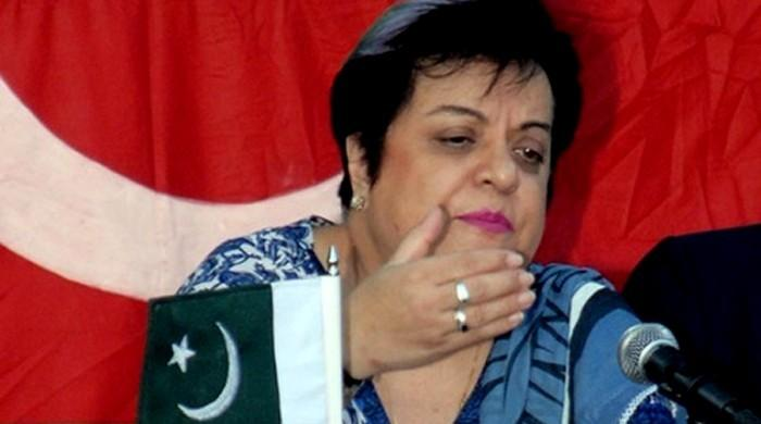 No law for public hanging for rapists in offing: Shireen Mazari
