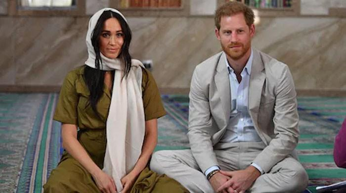 Meghan Markle, Prince Harry slammed for outrageous African tour expenses