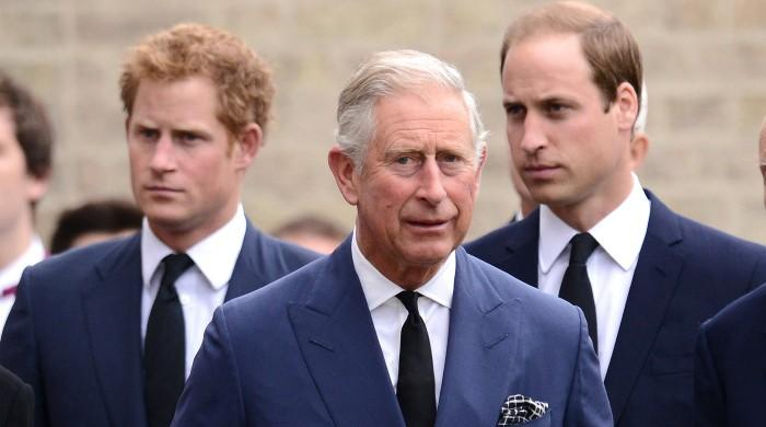 Prince William and Harry take $7million from Prince Charles in just one year