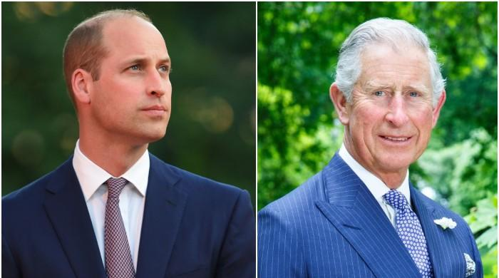Prince Charles, Prince William termed 'unfit' to take over the throne after Queen