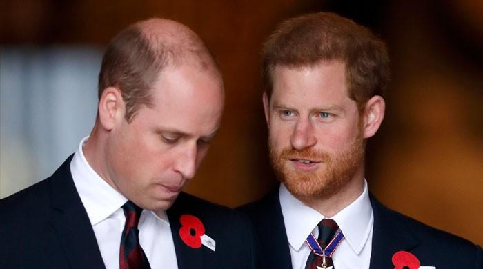 Prince William told Prince Harry that Princess Diana 'would've been proud of him'