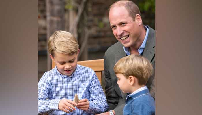 Malta Claims Fossilized Shark Tooth That David Attenborough Gifted Prince George