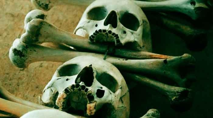 Probe launched after human skulls, bones found in Karachi's DHA