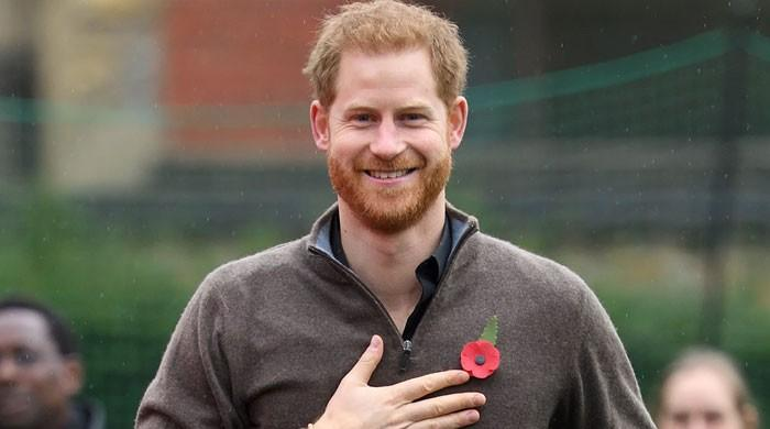 Can Prince Harry become an American citizen despite past misdemeanors?
