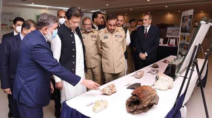 Pakistan's nuclear, strategic capability safe, secure: PM Imran Khan