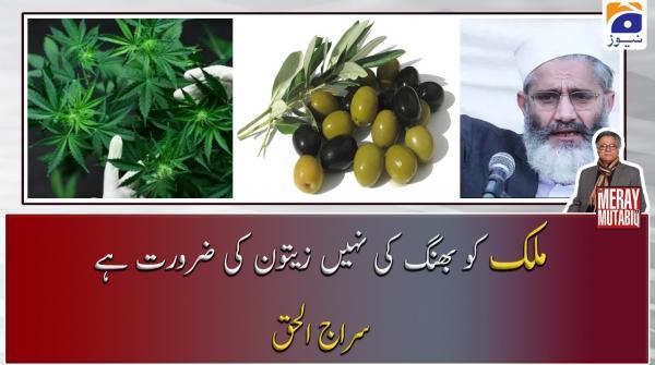 Mulk ko Bhang nahi Zaitoon ki zarurat hai, Siraj-ul-Haq